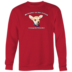 Men's Crewneck Sweatshirt (Additional Colors Available)