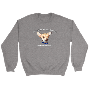 Unisex Crewneck Sweatshirt (additional colors available)