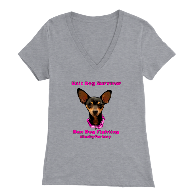 Women's Bella V-Neck T-Shirt (additional colors available)