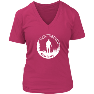 Women's District V-Neck T-Shirt (additional colors available)