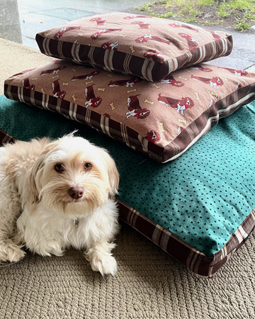 Sustainably Snug Stuff-it-Yourself Pet Bed Cover