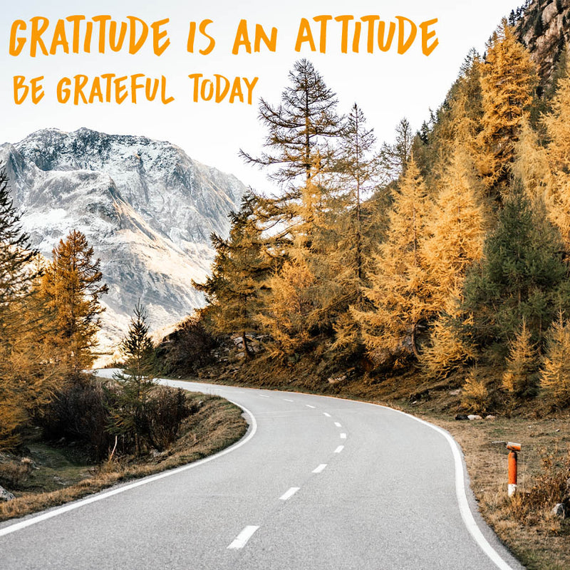Gratitude is an Attitude - Be Thankful Today