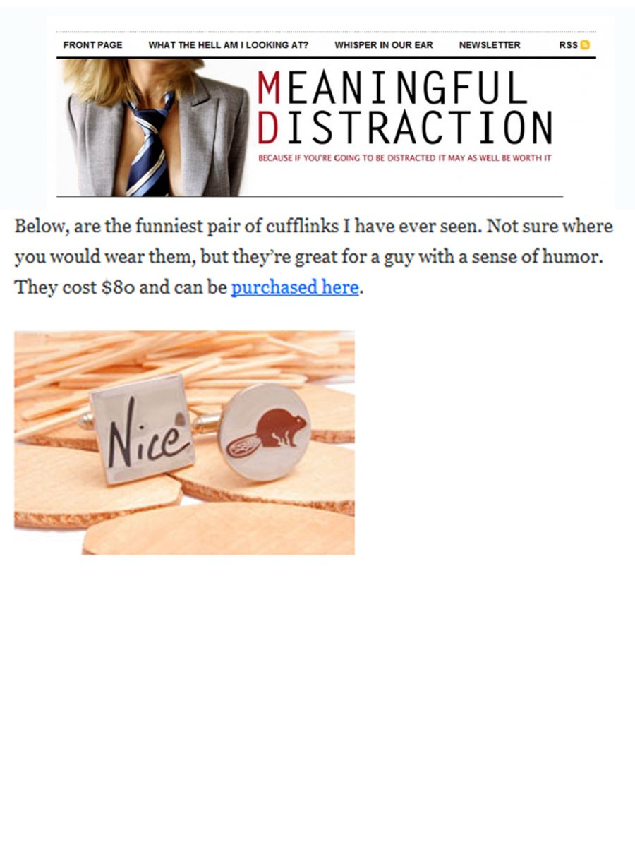 Meaningful Distraction Article