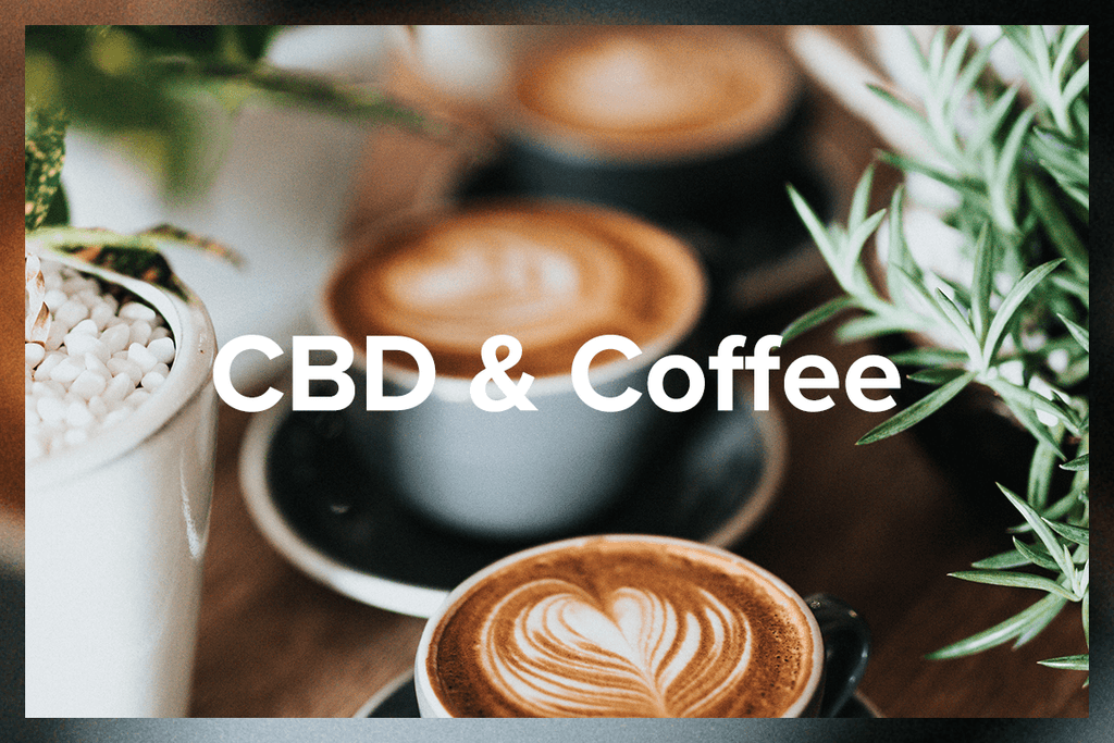 CBD Coffee: What is it and how do I make it?