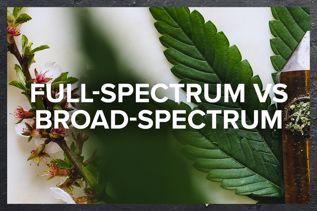 Full-Spectrum vs Broad-Spectrum
