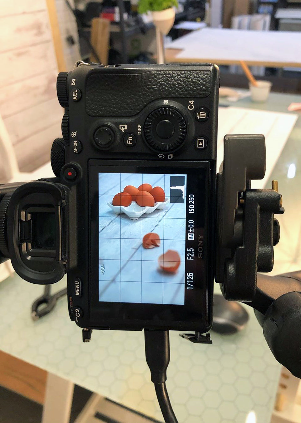 Sony A7RIII with vinyl backdrops for food and product photography