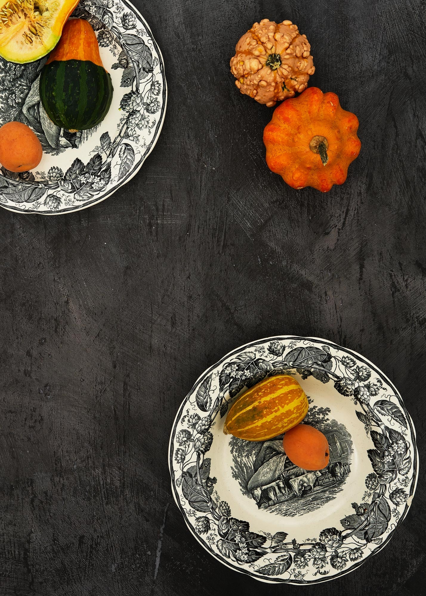 Dark vinyl backdrop used in food photography