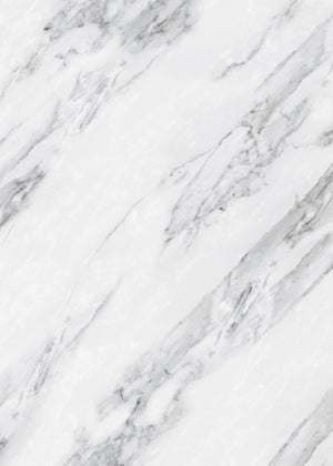 Arctic Marble Large Vinyl Photography Backdrop by Club Backdrops