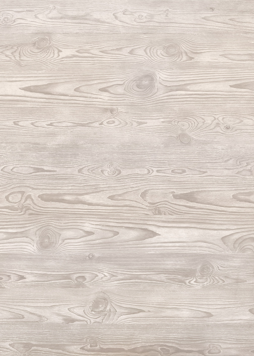 Ghost Wood Large Vinyl Photography Backdrop by Club Backdrops