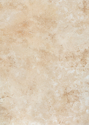 Sandstone Large Vinyl Photography Backdrop by Club Backdrops