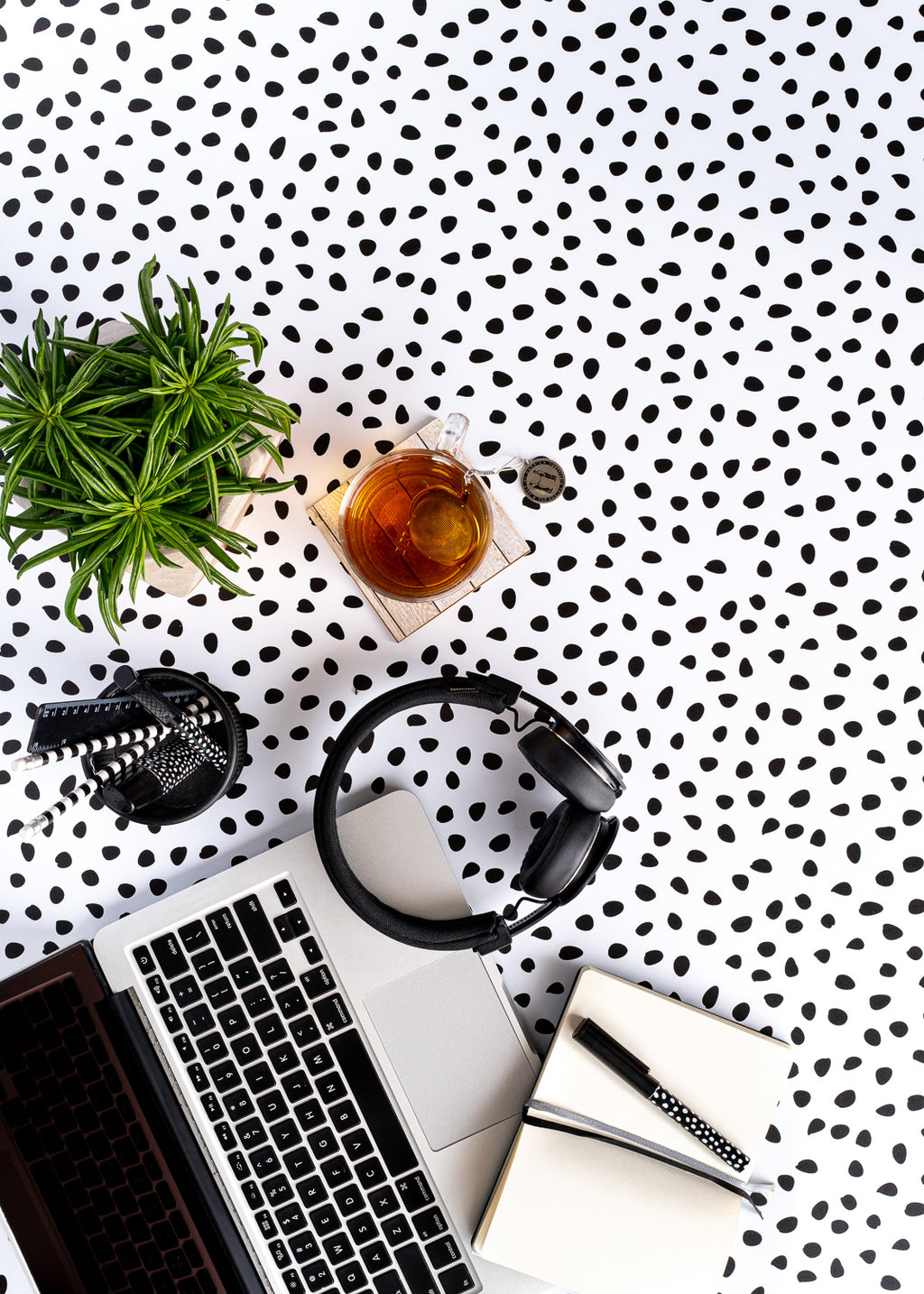 Dotty Vinyl Backdrop by Photography Backdrop Club [60 x 90cm / ~2 x 3ft]