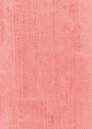 Fandango Pink Vinyl Backdrop by Photography Backdrop Club