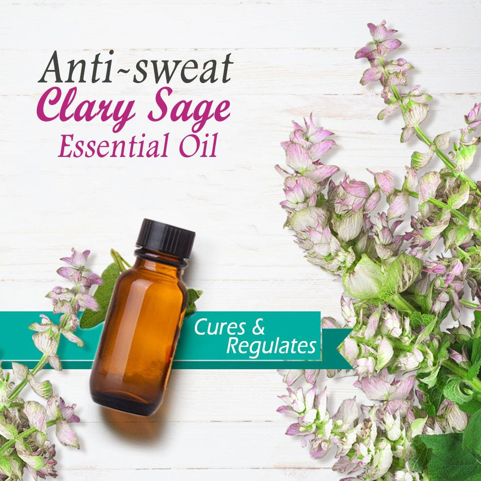 Anti-sweat Clary Sage Essential Oil