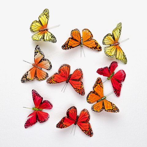 Butterfly Strand