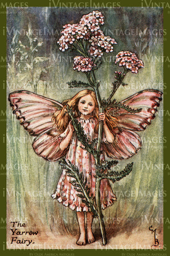 Cicely Barker 1923 - 2 - The Yarrow Fairy