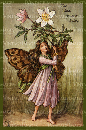 Cicely Barker 1923 - 4 - The Wind Flower Fairy