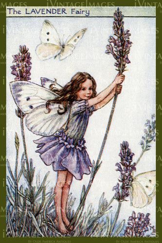 Cicely Barker 1923 - 6 - The Lavender Fairy