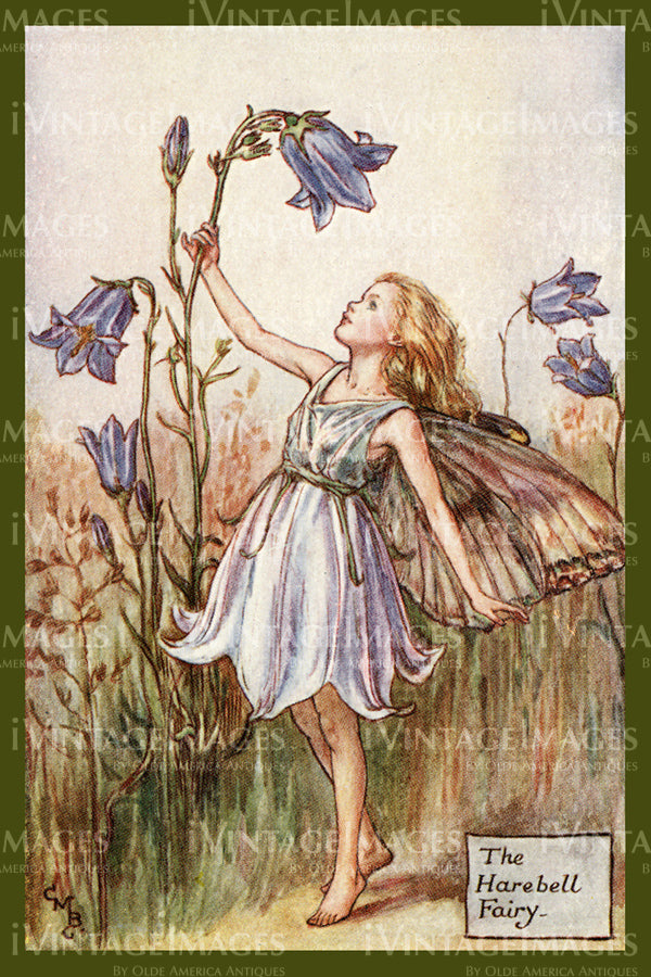 Cicely Barker 1923 - 7 - The Harebell Fairy