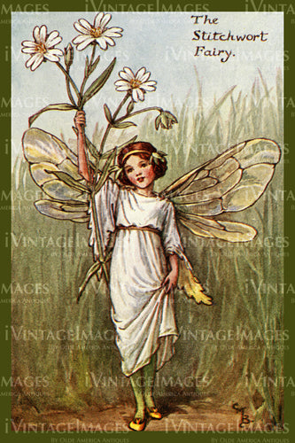 Cicely Barker 1923 - 8 - The Stitchwart Fairy