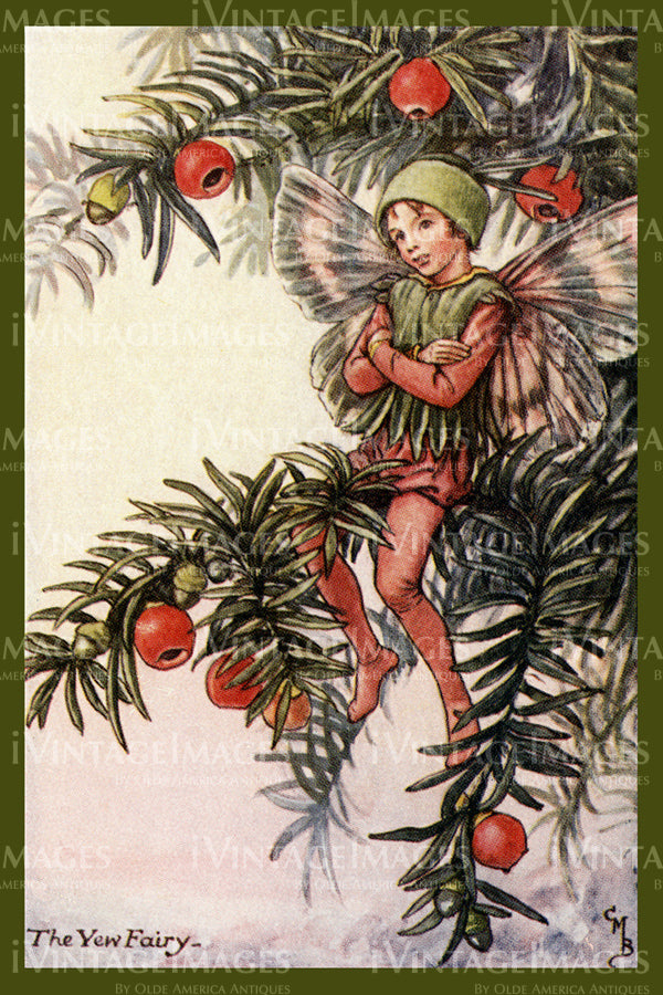 Cicely Barker 1923 - 11 - The Yew Fairy