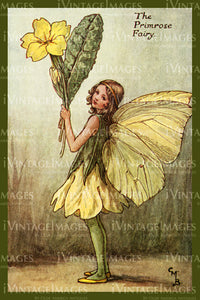 Cicely Barker 1923 - 26 - The Primrose Fairy