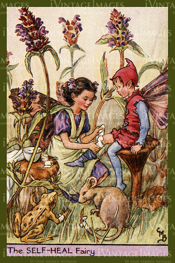 Cicely Barker 1923 - 29 - The Self-Heal Fairy