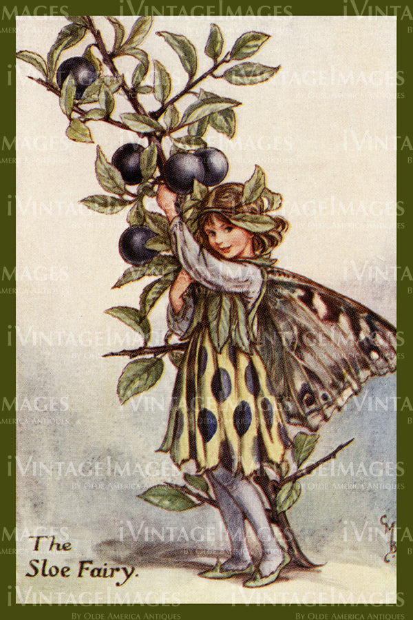 Cicely Barker 1923 - 35 - The Sloe Fairy