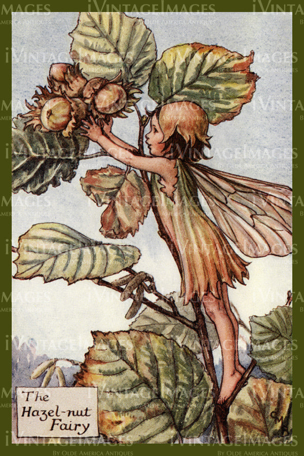 Cicely Barker 1923 - 39 - The Hazel-nut Fairy