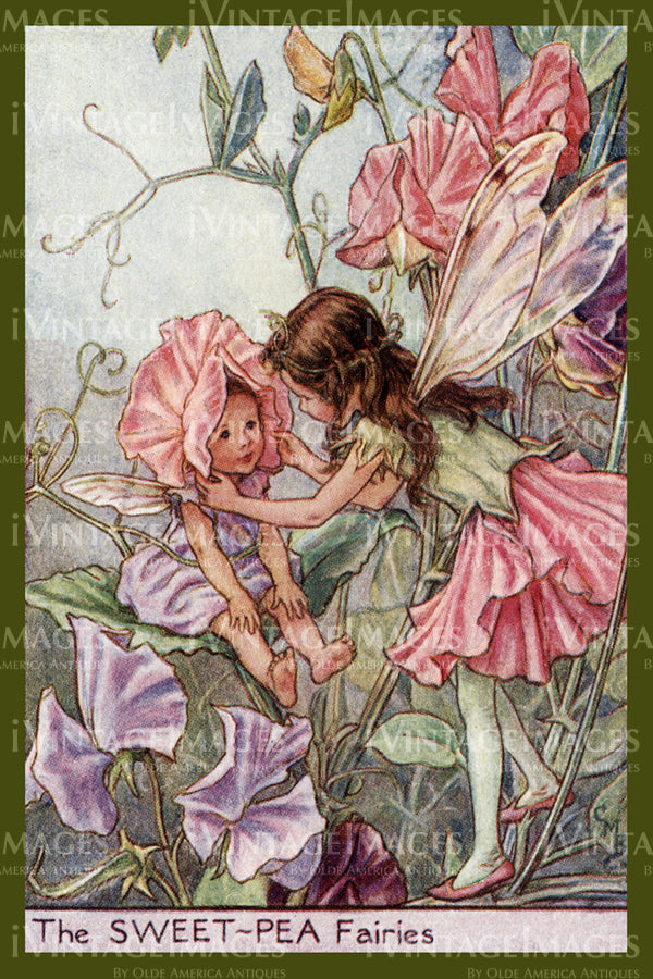 Cicely Barker 1923 - 41 - The Sweet-Pea Fairy