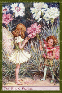 Cicely Barker 1923 - 44 - The Pink Fairy