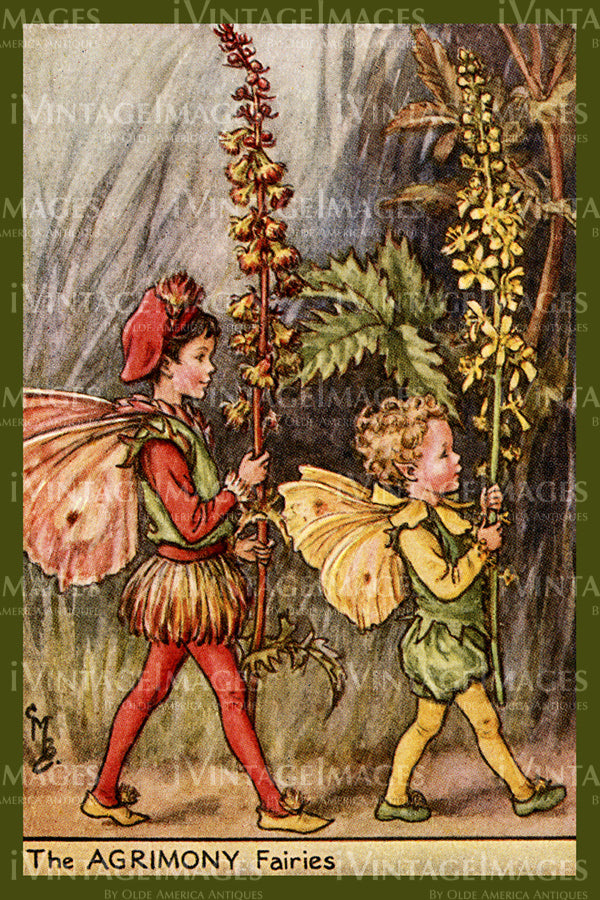 Cicely Barker 1923 - 45 - The Agrimony Fairy