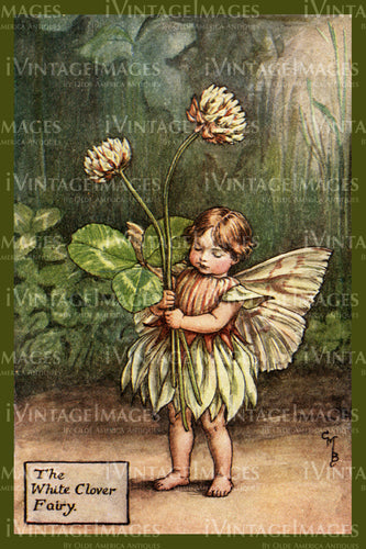 Cicely Barker 1923 - 48 - The White Clover Fairy