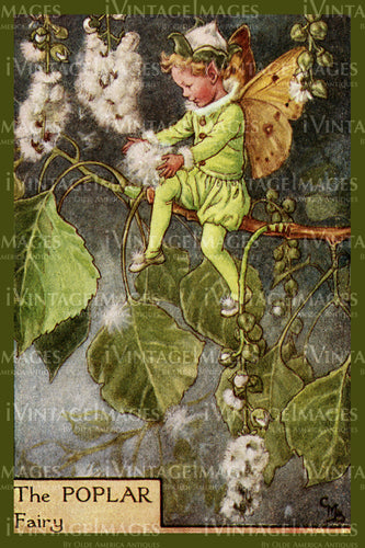 Cicely Barker 1923 - 51 - The Poplar Fairy
