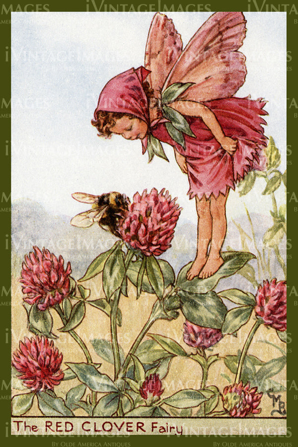 Cicely Barker 1923 - 53 - The Red Clover Fairy