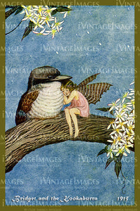 Outhwaite Fairy 1915 - 13 - Bridget and the Kookaburra