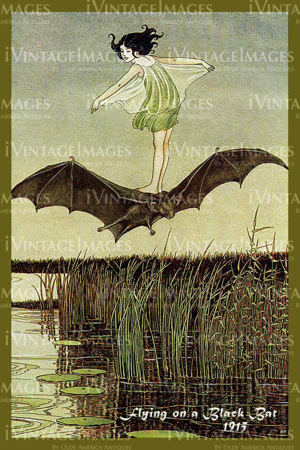 Outhwaite Fairy 1915 - 15 - Flying on a Black Bat