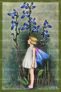 Outhwaite Fairy 1934 - 18 - Fairy and Flower 2