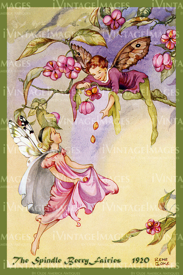 Rene Cloke Fairy - 26 - The Spindle Berry Fairies