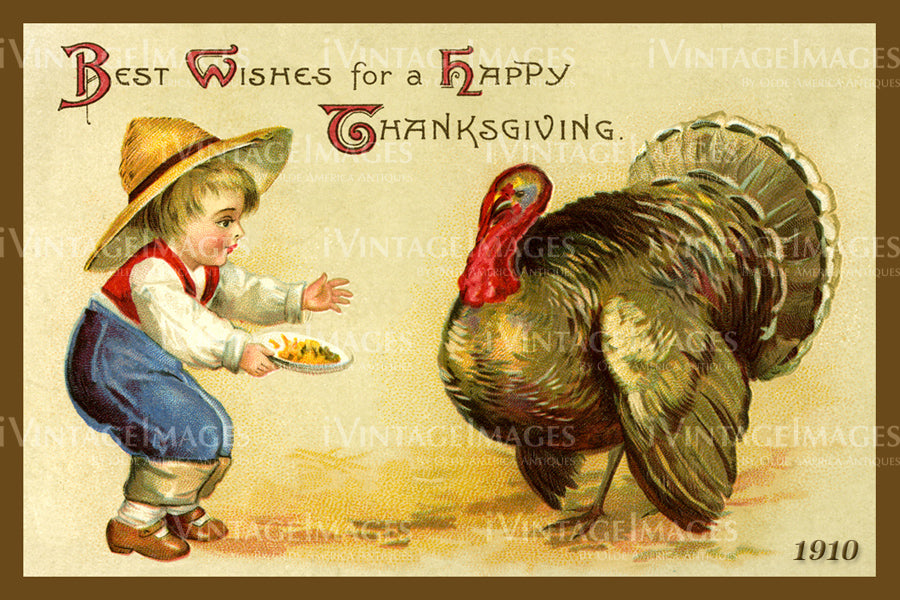 Thanksgiving Postcard 1909 - 06