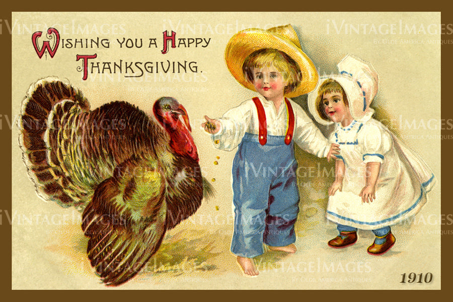 Thanksgiving Postcard 1909 - 08