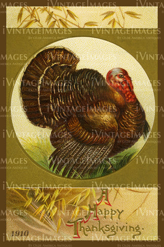Thanksgiving Postcard 1909 - 15