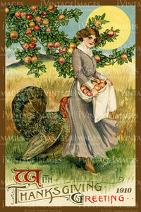 Thanksgiving Postcard 1909 - 19