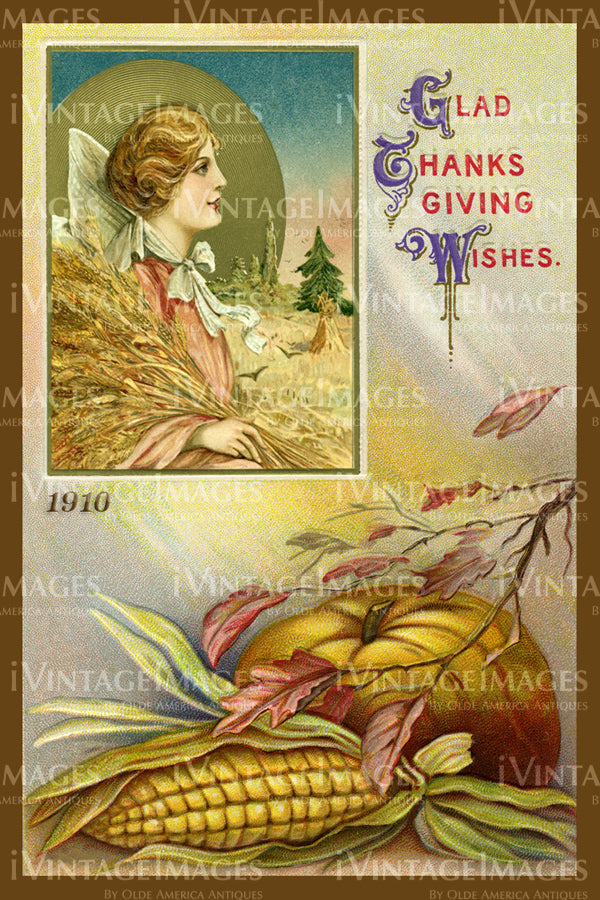 Thanksgiving Postcard 1909 - 25