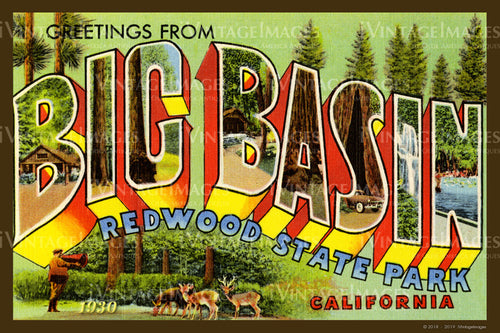 Big Basin California Large Letter 1930 - 005