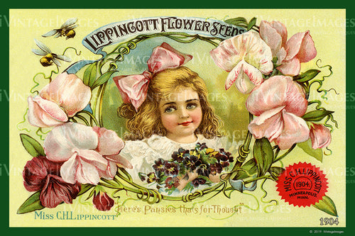 Lippincott Flower Seeds 1904 - 003