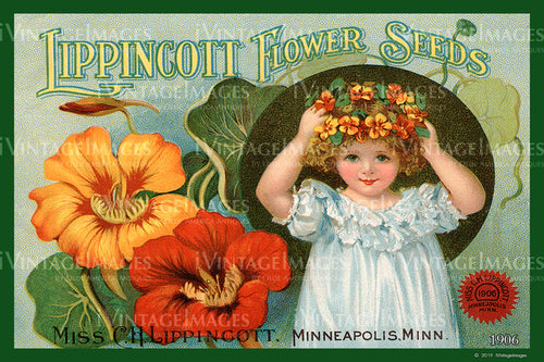 Lippincott Flower Seeds 1906 - 004