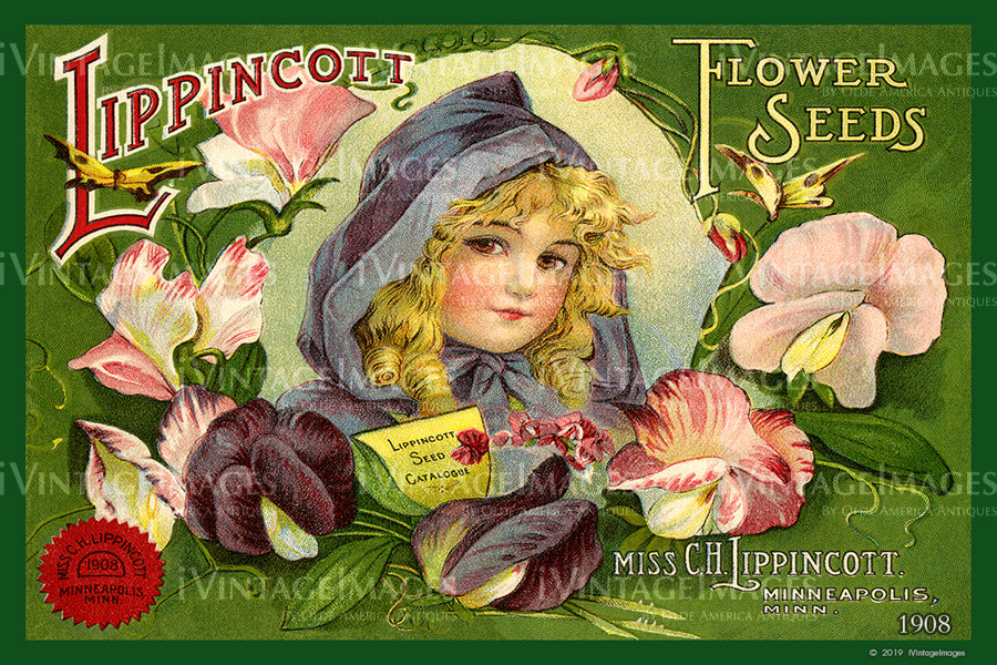 Lippincott Flower Seeds 1908 - 005