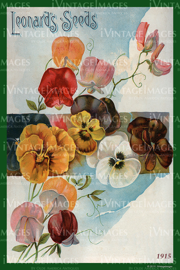 Leonards Flower Seeds 1915 - 016