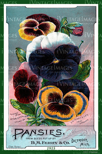 Ferry Flower Seeds 1915 - 019