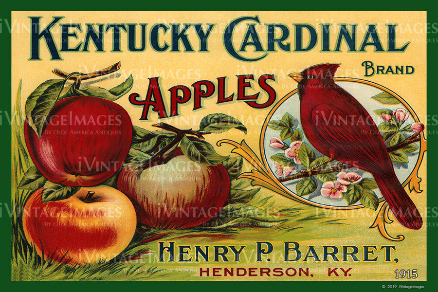 Kentucky Cardinal Apples 1915 - 016